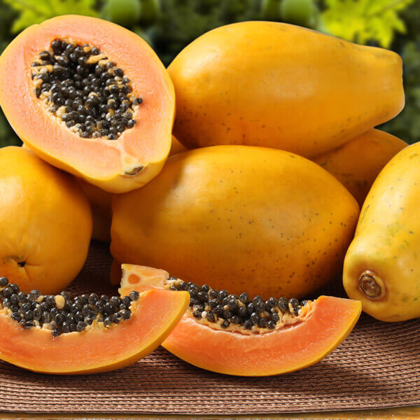 Carica Papaya Fruit Extract*