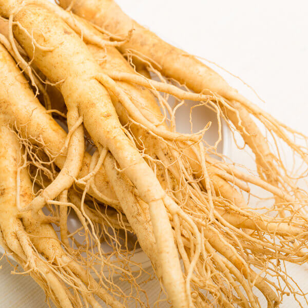 Panax Ginseng Root Extract*